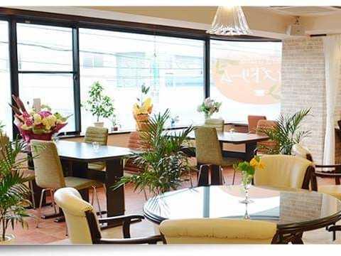 間借り飲食店の店舗物件情報の千葉県鎌ケ谷市南初富6丁目カフェ